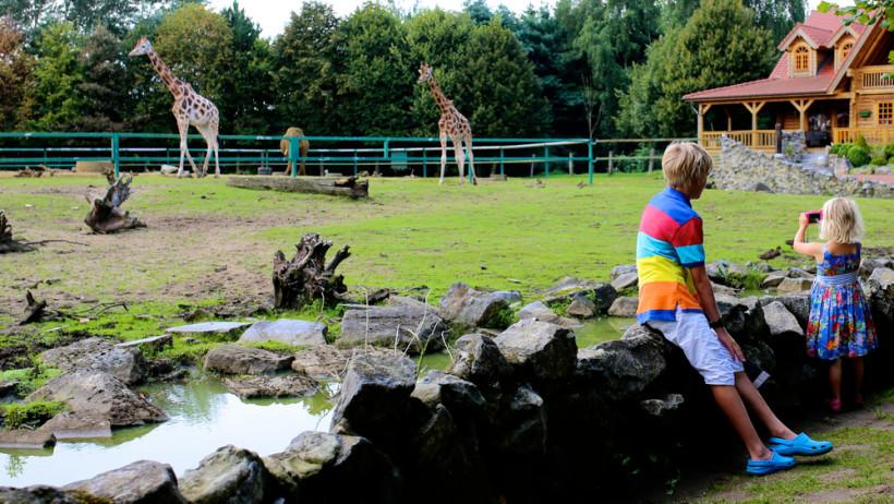 Зоопарк «12 місяців»