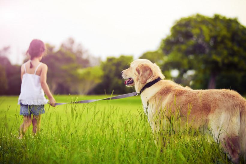 дівчинка з собакою