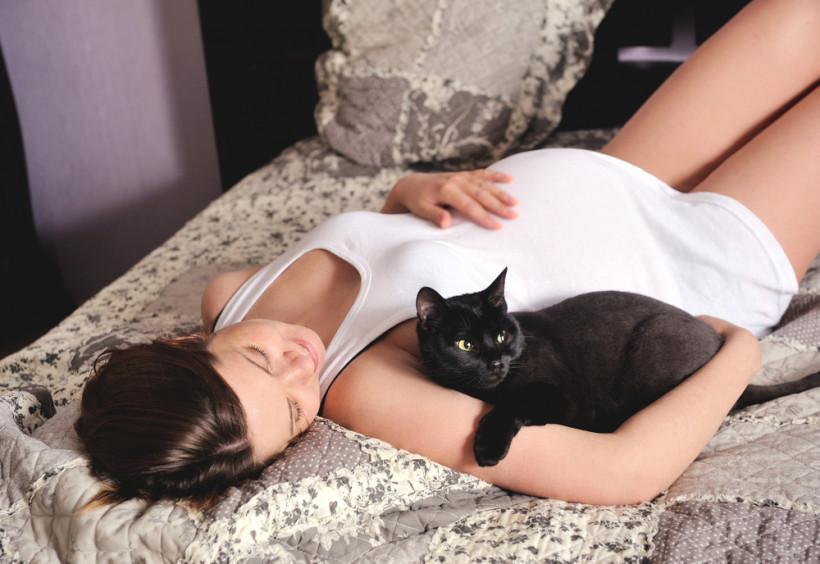 чувствуют ли животные беременность хозяйки термобелье