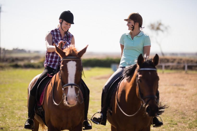 пара на лошадях