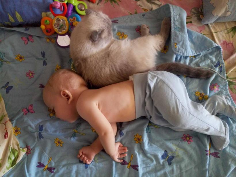 малюк із котом