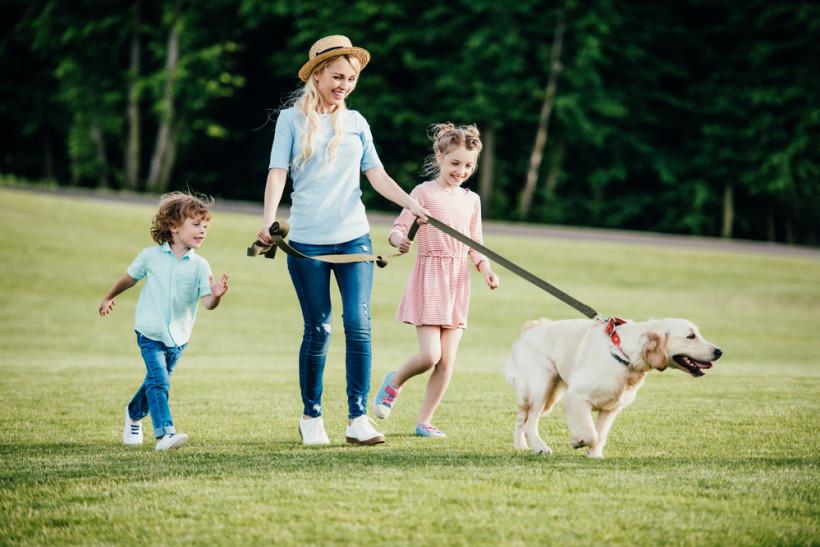 мама с детьми на проулке