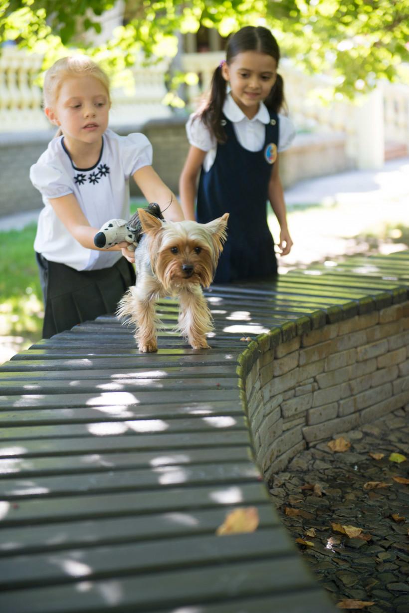 Песик бежит на камеру от девочек