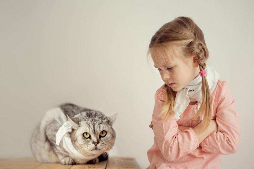 дівчинка котик