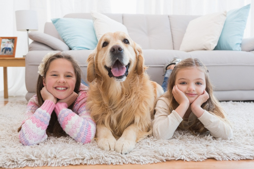 Дети и собака в доме