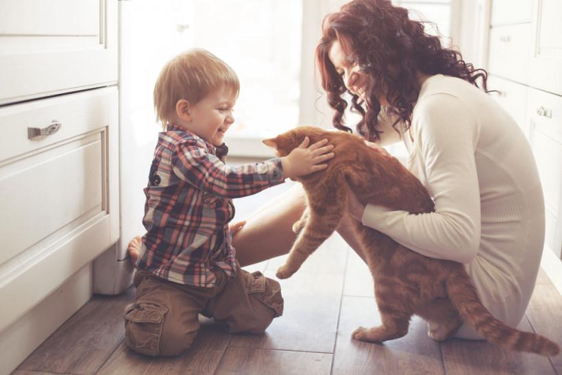 мама ребенок и кот