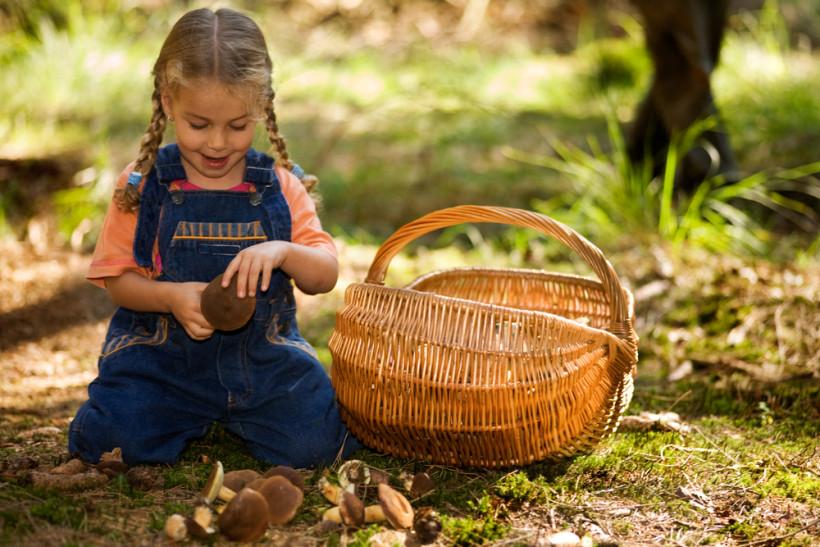 девочка и грибы