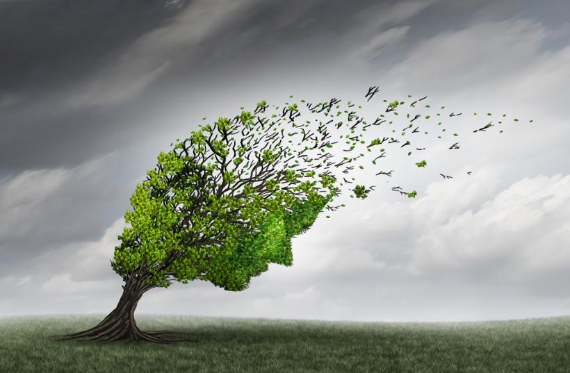 Кризис 30 лет - образ дерева