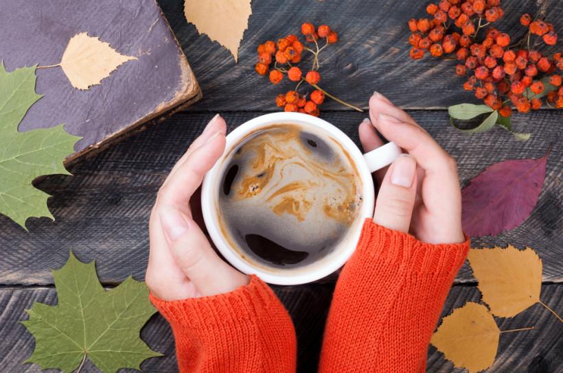 Чашка, рябина, листья и руки женщины