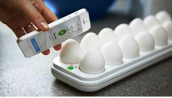 смарт лоток для яиц