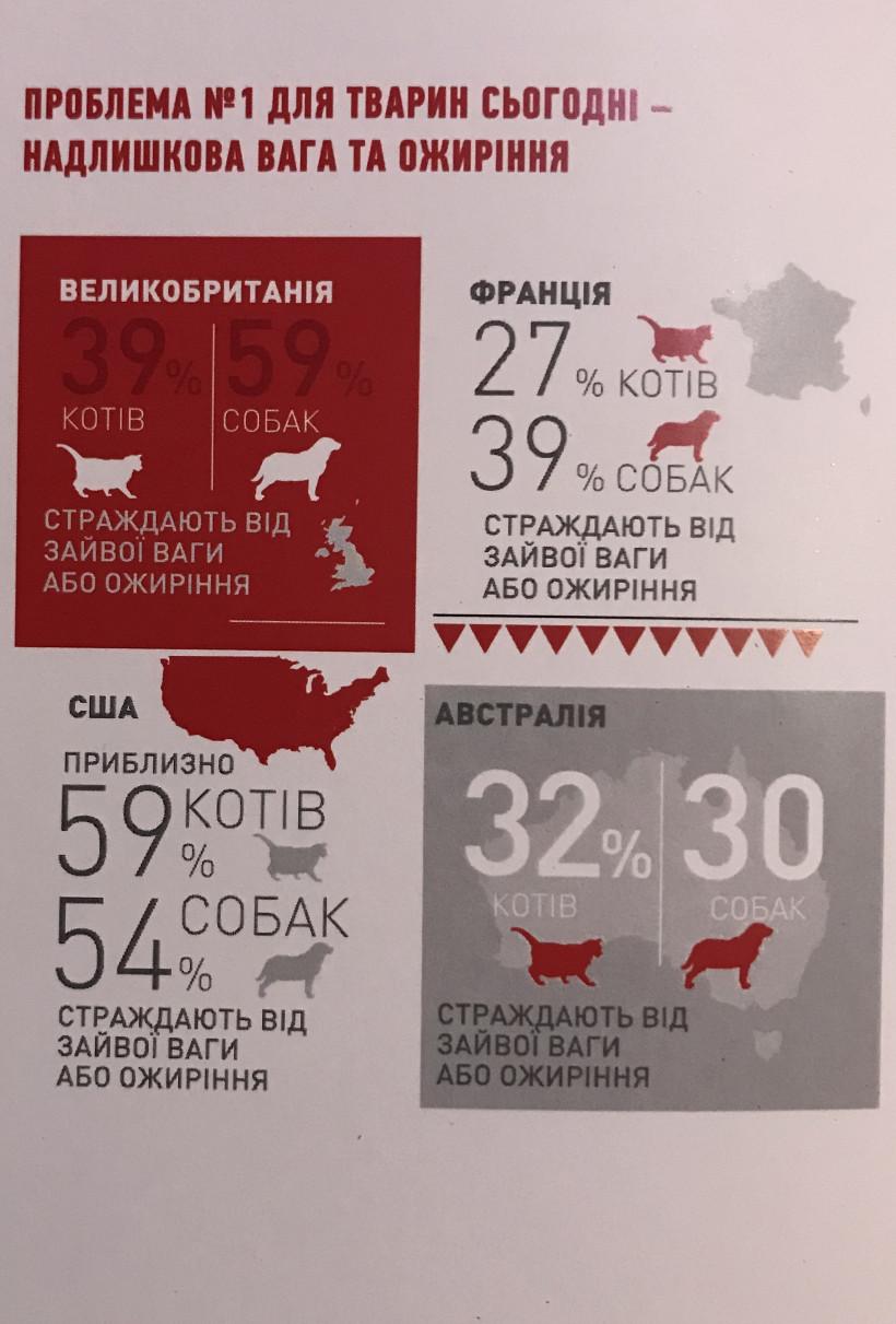 Статистика ожирения животных в мире