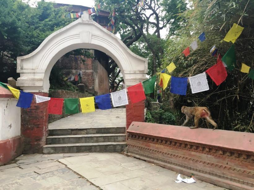 буддийский храм в непале