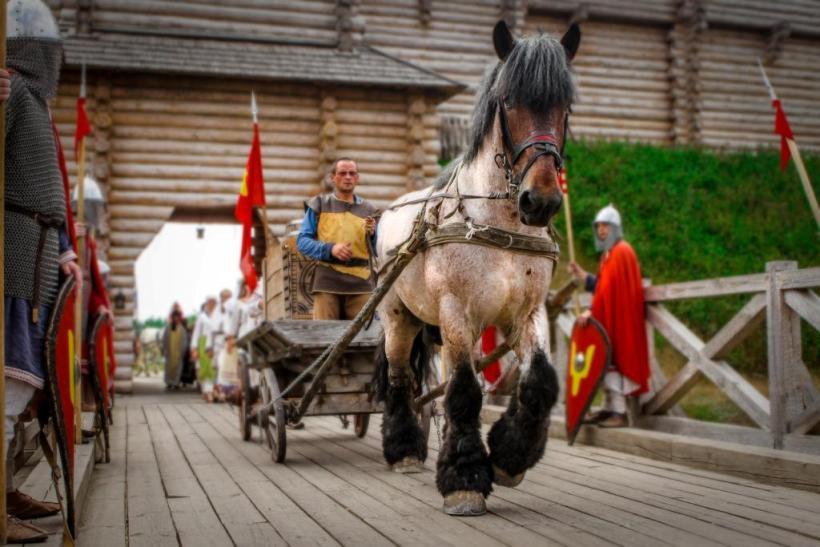 конь в упряжке в парке Киевская Русь