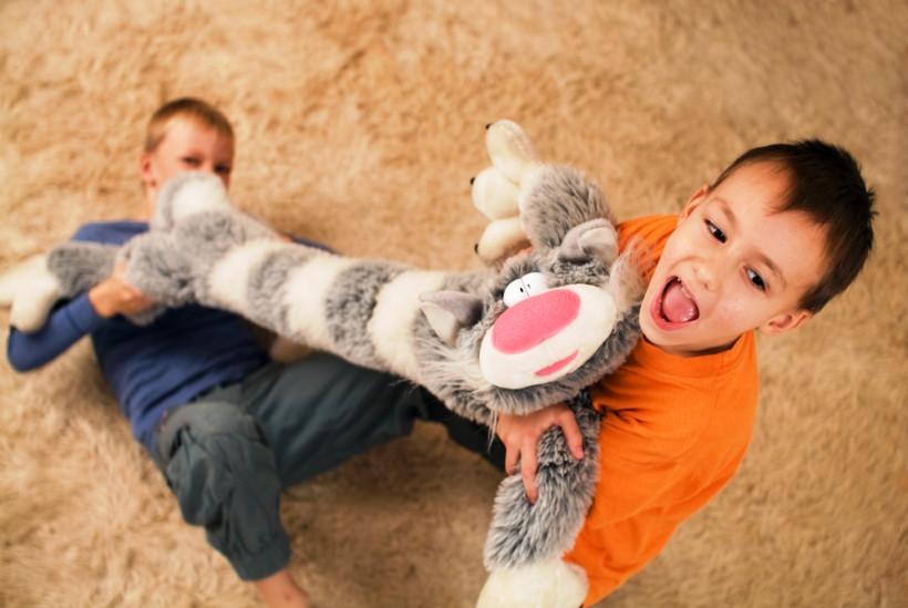 дети ссорятся