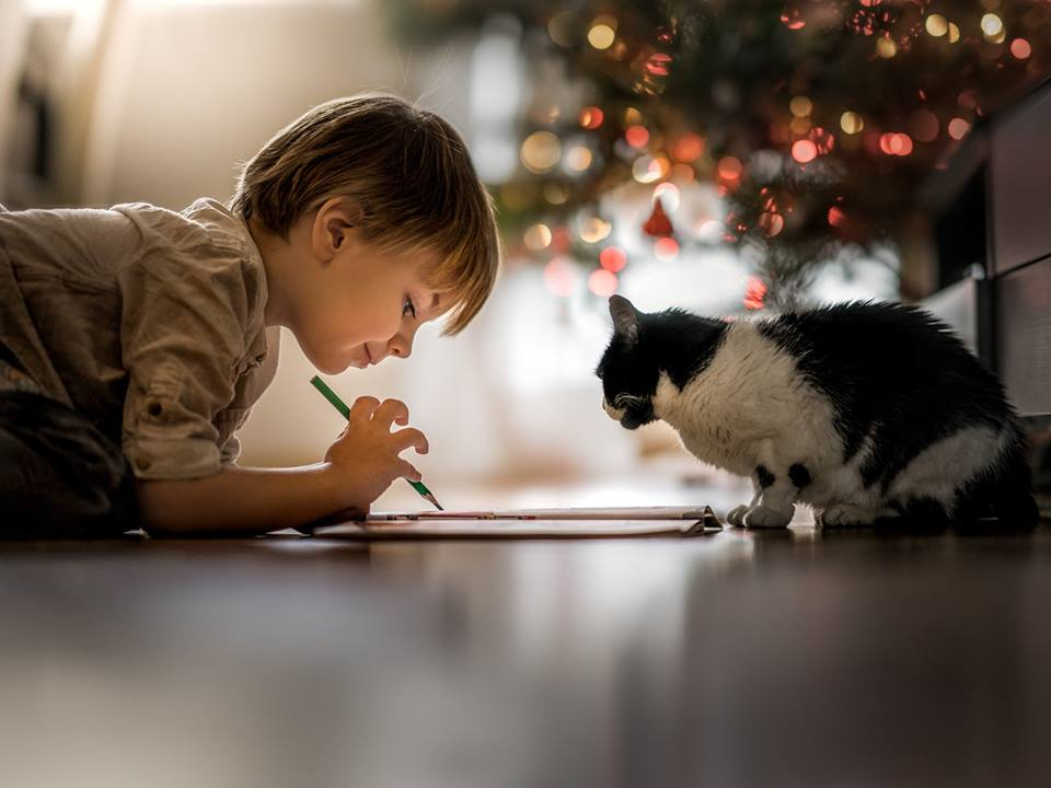 малюк і котик