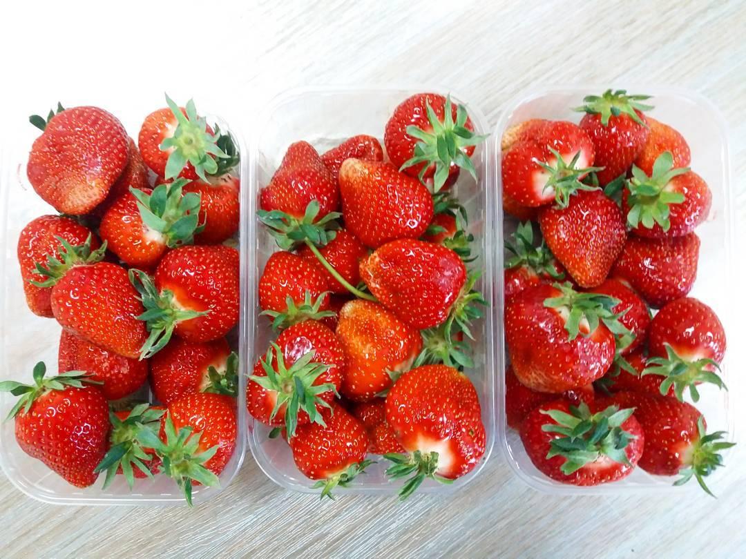 помидоры от холестерина