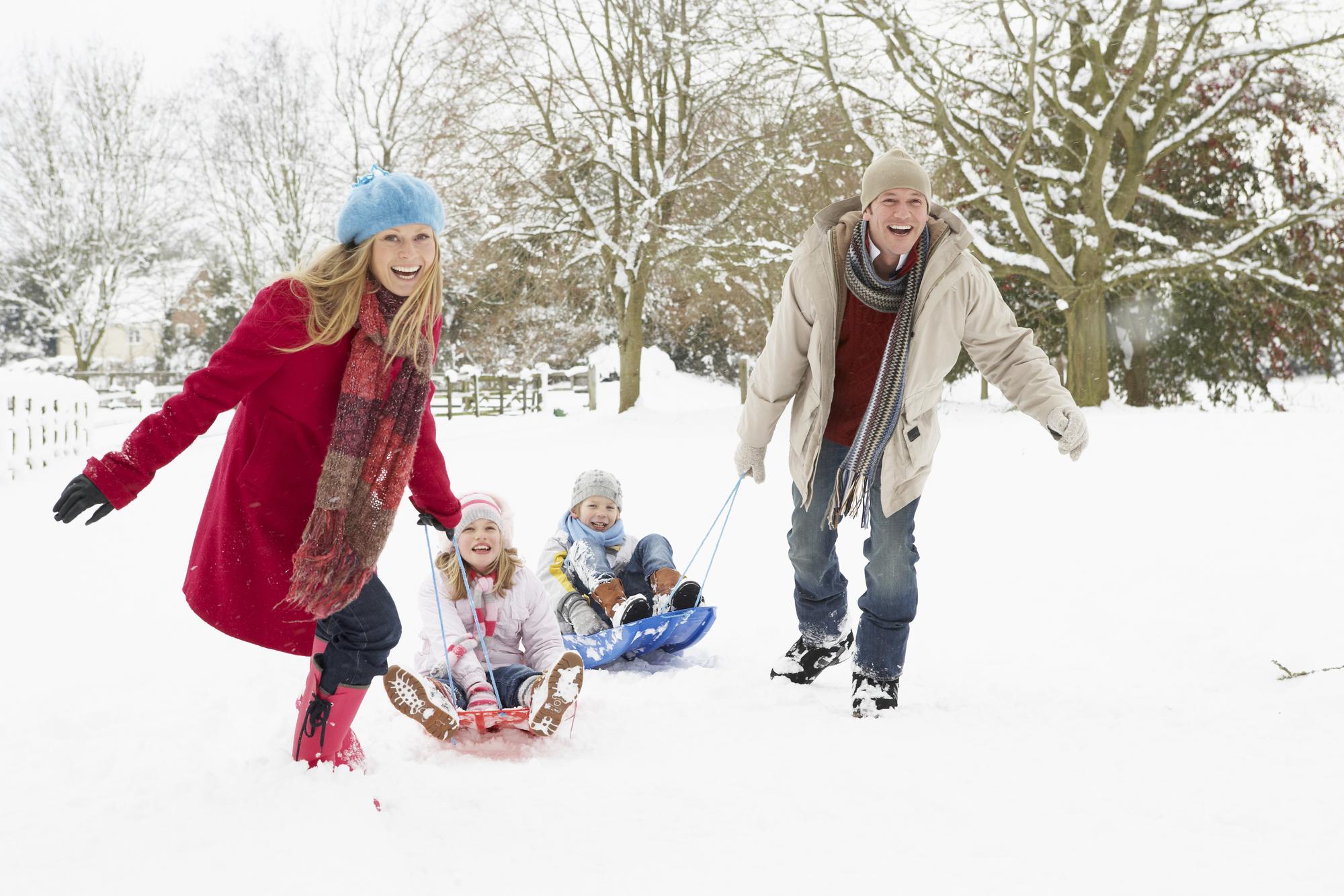 видео драцены картинка зимняя прогулка с семьей заката доме
