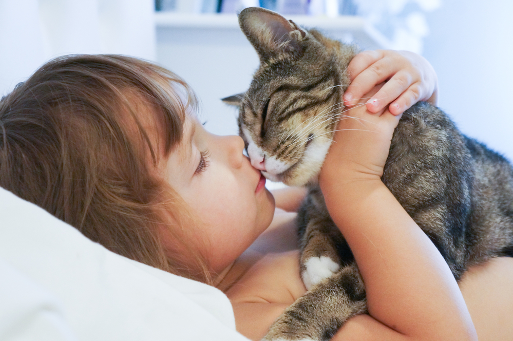 Dogs and cats kissing on lips