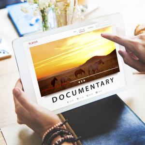 17 Міжнародний фестиваль документального кіно про права людини Docudays UA буде проведено онлайн!