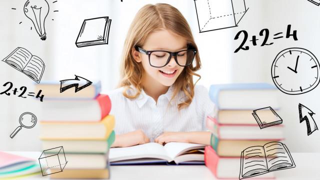 Відповідно до стандарту: які 11 базових компетенцій повинні бути в учня 5-9 класу?